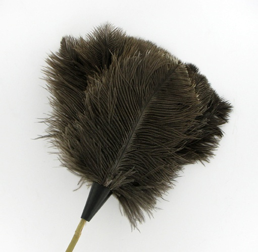 Farmed Ostrich Feather Duster_thumbnail